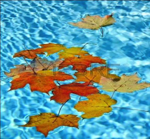piscinas-otono